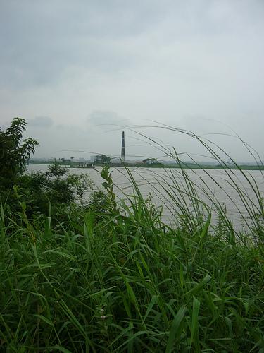 naturaleza-bangladesh.jpg