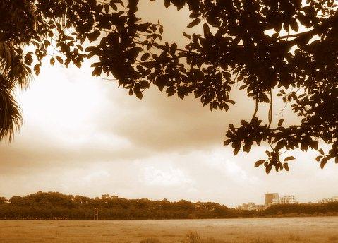 viaje-dhaka.jpg